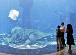 Atlantis - The Palm - Aquarium