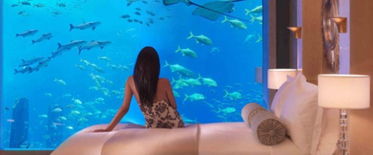 Atlantis - The Palm - Lost Chambers Room View
