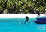Fergate Private Island - Diving